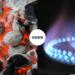 Kohle oder Gasgrill?